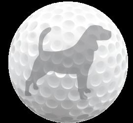 Beagle_GolfBall